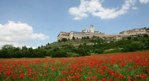 low angle shot of Assisi in May 2007